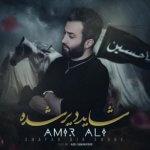 hs AmirAli Shayad Dir Shode 150x150 - دانلود آهنگ جدید امیرعلی به نام شاید دیر شده